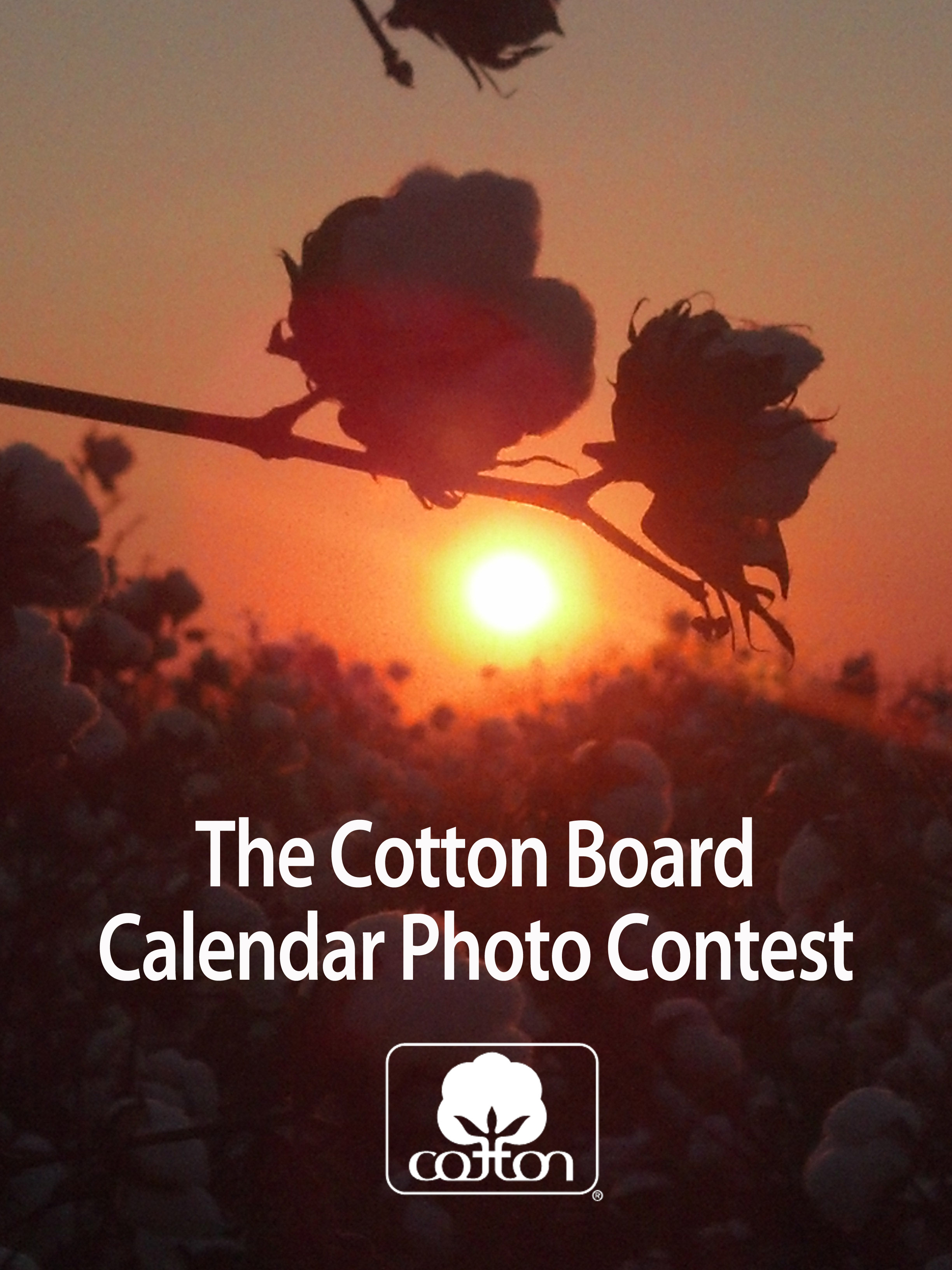 Calendar Photography Contest : Newsletters news cotton board