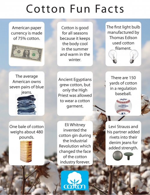 CottonFunFacts